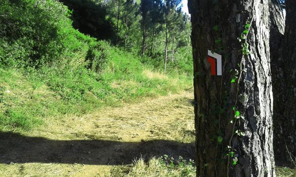 BiciTrails BiciTrails Sinalética BTT Percursos pedestres hiking signage